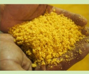 Extruded Full Fat Soymeal