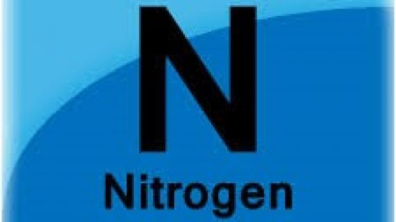 Image of Nitrogen in Blue Box from Periodic Table of Elements