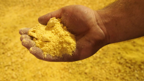 ExPress Soybean Meal
